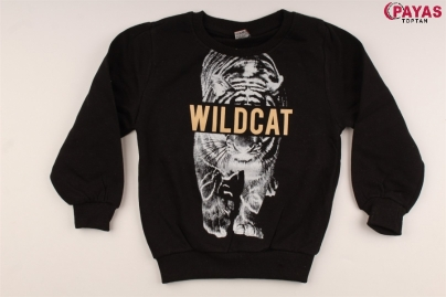 8/12 Y WILD CAT BASKILI 3 IP SWEAT